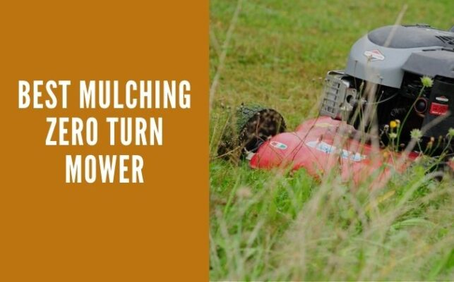 Best Mulching Zero Turn Mower Of 2021